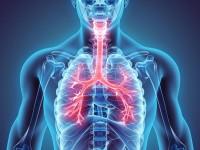 Czym jest patomorfologia w raku płuca? [video]